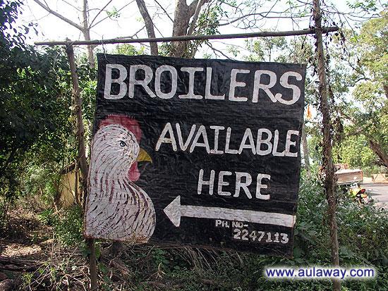 Куриная ферма в индии
