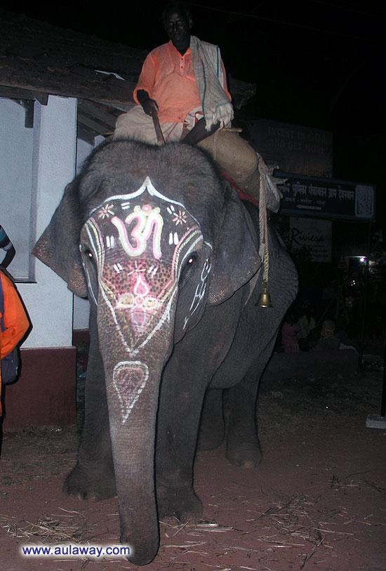 Слон на страже ночного рынка в Апоре