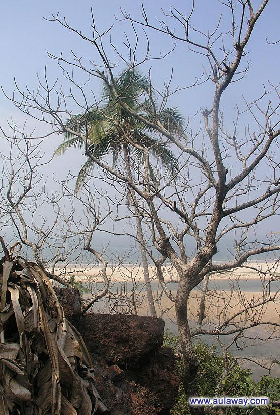 Вид изнутри. Красный Форт. Поиски заброшенных мест живя в Гоа.