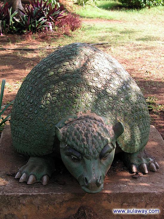 Еще один зверек в научном центре Гоа.
