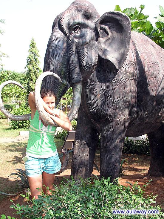 Ну и слоники. Как же без них в научном музее Гоа.