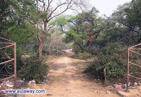 Национальный парк в Дели. Вход.