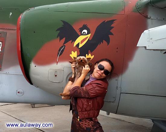Веселая окрасочка. И мы так можем полетать. Чем собака не птиц!!