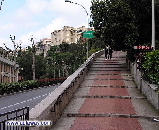 Дорога во дворец Монако