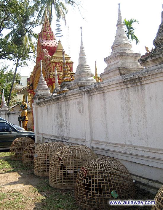 По дороге к центру. Петухи у дороги. Лаос.