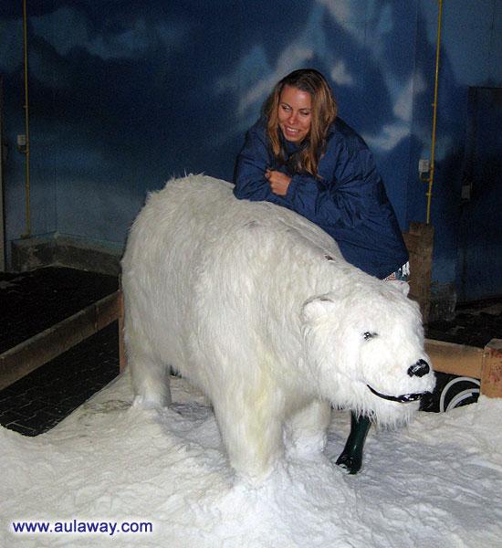 Тайский холодильник. Dream World. Белые медведи.
