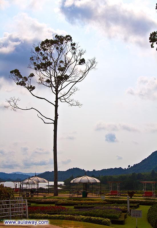 Атмосфера Таиланда.